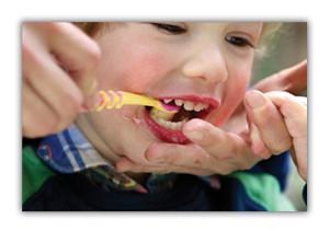 Toddler brushing teeth