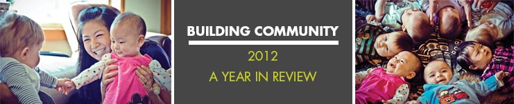 2012 Annual report cover banner