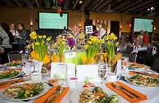 19th Annual Luncheon