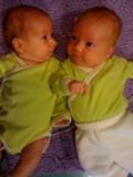 Twinsesized