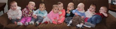 Portland Babies
